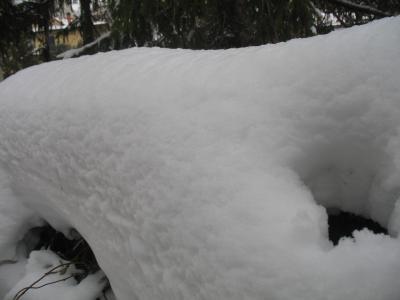 11_feb_2012_neve_neve_e_neve_1270